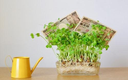 お金と植物、じょうろ
